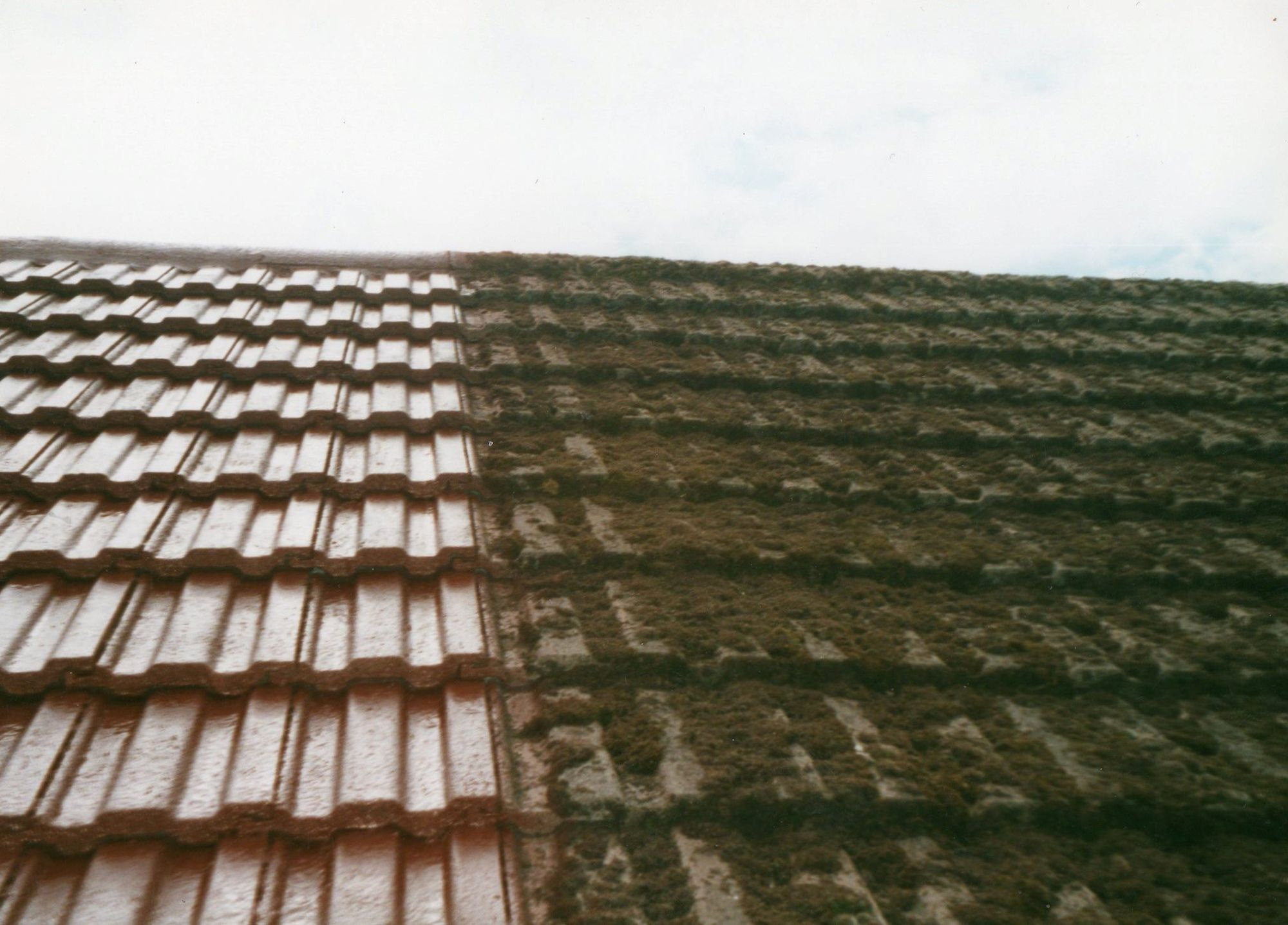 Moss Removal Services John James Roofing